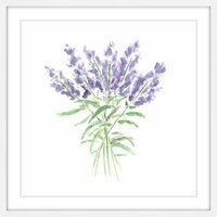 Marmont Hill Inc Marmont Hill - 'Lavender Herbs' by Thimble Sparrow Framed Painting Print