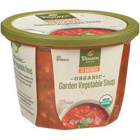 Panera Bread® at Home Organic Garden Vegetable Soup 16 oz. Tub