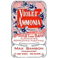 Buyenlarge 'Violet Ammonia' Wall Art Size: 66