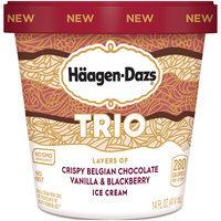 Häagen-Dazs Trio Vanilla, Blackberry, Chocolate Ice Cream 14 fl. oz. Carton