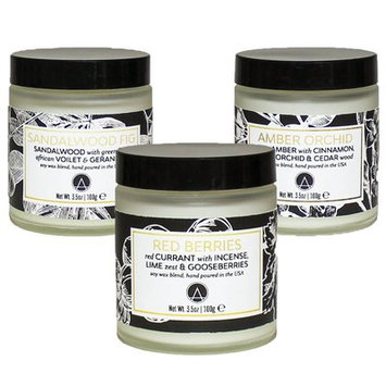 Aesthetic Content Botanical Scented Soy Jar Candles Set of 3 Red Currant, Sandalwood & Amber
