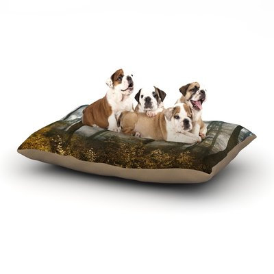 East Urban Home Iris Lehnhardt 'Forest Mystics' Dog Pillow with Fleece Cozy Top Size: Large (50