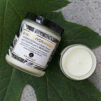Aestheticcontent Shady Hydrangea Scented Soy Jar Candle Size: 3.56