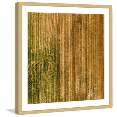 Marmont Hill Inc Marmont Hill - 'Crop Trails' by Karolis Janulis Framed Painting Print