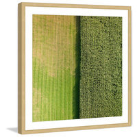Marmont Hill Inc Marmont Hill - 'Green Rows' by Karolis Janulis Framed Painting Print