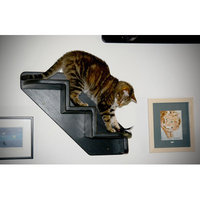 Theverticalcat 3 Step Pet Stair Color: Espresso