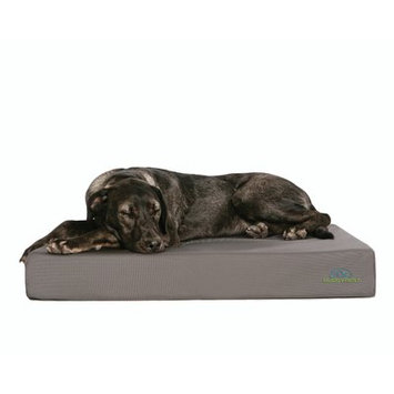 Buddyrest Pet Products Chew Proof Tough Buddy Dog Bed Size: 48