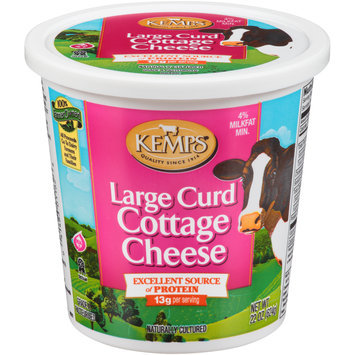 Kemps® Large Curd Cottage Cheese 22 oz. Plastic Tub