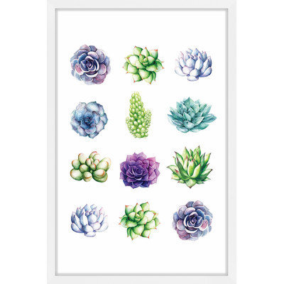 Marmont Hill Inc Marmont Hill - 'Succulent Chart' by Shayna Pitch Framed Painting Print