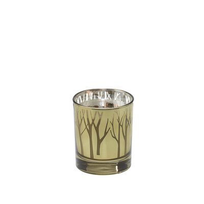 Alcott Hill Woodland Crisp Night Air Scented Jar Candle