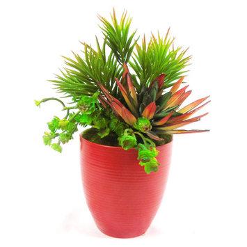 Creative Branch Faux Succulent/Senecio/Agave/Sedum Plant in Pot