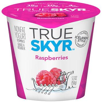 Dannon of the World™ True Skyr™ Raspberries Yogurt 5.3 oz. Single Serve