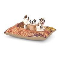 East Urban Home Jillian Audrey 'Autumn Hike' Dog Pillow with Fleece Cozy Top Size: Large (50