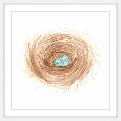 Marmont Hill Inc Marmont Hill - 'Nest' by Thimble Sparrow Framed Painting Print