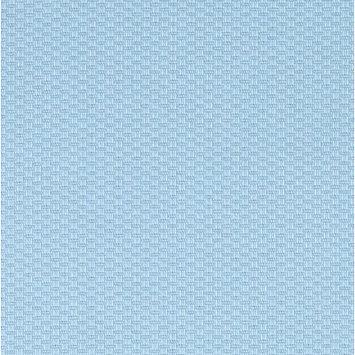 Bebe Chic Jake Little Pique Yardage Color: Blue