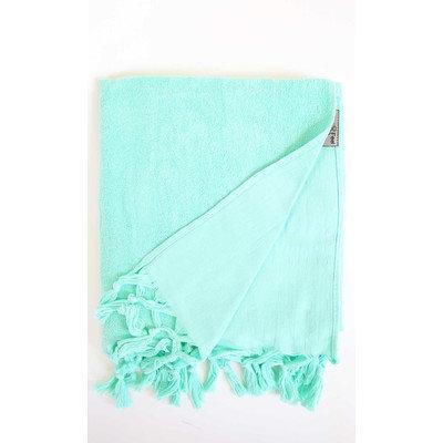 Darby Home Co Hudgens Bath Sheet Color: Aqua