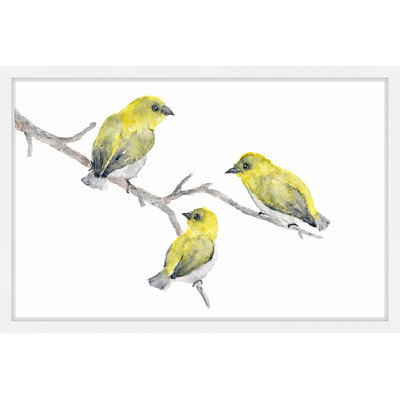Marmont Hill Inc Marmont Hill - 'Yellow Birds' by Thimble Sparrow Framed Painting Print