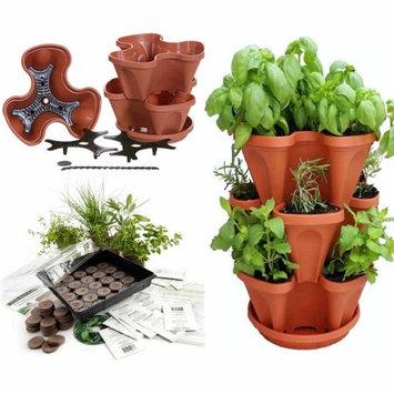 Herbkits.com Indoor Herbal Tea Herb Garden Seed Starter Kit & Planter - TerraCotta