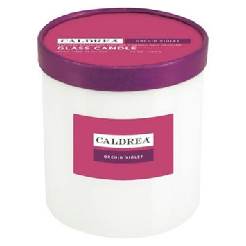 Essentials Collection Glass Candle Orchard Violet 16oz - Caldera®