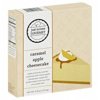 JUST IN TIME GOURMET 268561 4.42 oz. Caramel Apple Cheesecake Mix