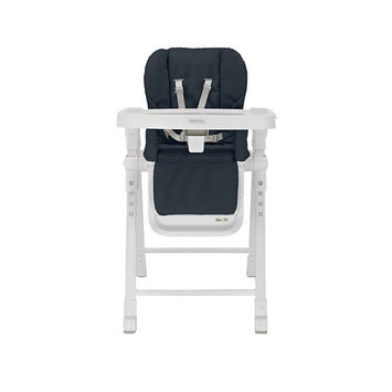 Inglesina Gusto HighChair - Fast and Easy Adjustable Baby High Chair for the Modern Family - Removable Tray Included
