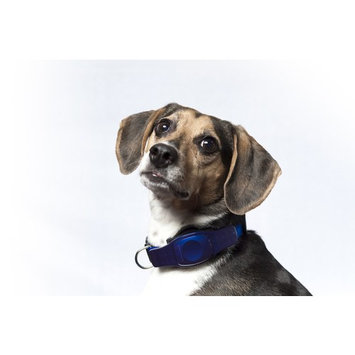 Waterproof Tracking Collars for Hunting Dogs Realtime GPS Pet Tracker
