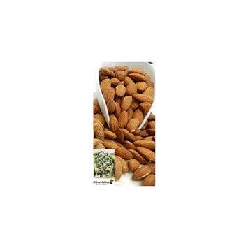 OliveNation Large Premium Roasted Unsalted Almonds