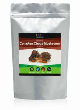 Optimally Organic Organic Raw Wildcrafted Chaga Mushroom Canadian 1/2 Lb