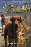 Harper Collins Publishers Survivors: The Gathering Darkness #3: Into the Shadows