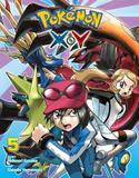 Perfect Square Pokémon X.Y, Vol. 5