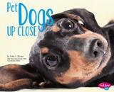 Capstone Press Pet Dogs Up Close