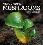 Firefly Books Astounding Mushrooms