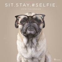 Sit Stay Selfie Wall Calendar by TF Publishing