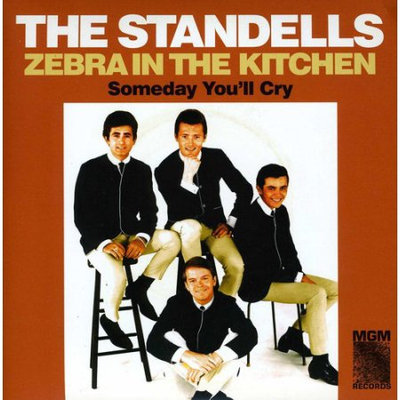 Fye Zebra in the Kitchen by The Standells