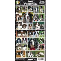 Clearance Item 470-00101 Pet Qwerks S19 English Springer Spaniel Dog Sticker