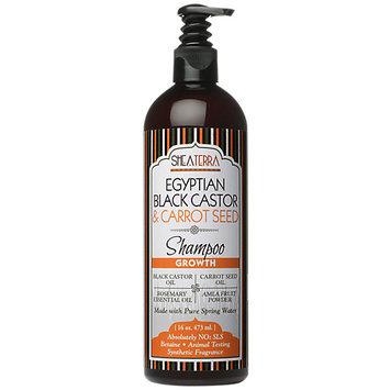 Shea Terra Organics Egyptian Black Castor Carrot Seed Shampoo