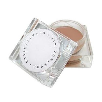 Chantecaille Chantecaille total concealer - cream, 0.12oz, 0.12 Ounce