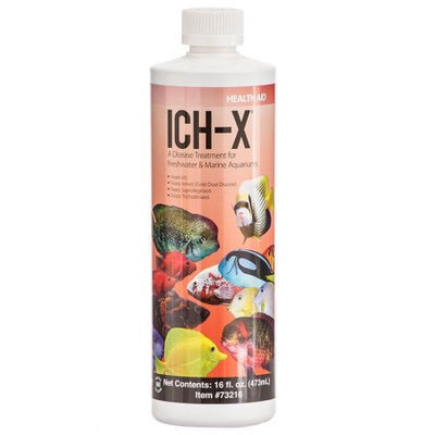 Topdawg Pet Supplies Ich X - Ich Treatment With More 16oz