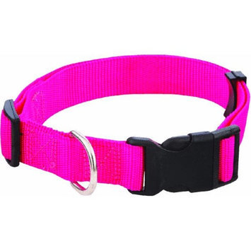 Westminster Pet 34143 Nylon Pet Fashion Collar