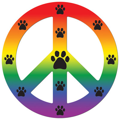 Imagine This Peace Car Magnet Sign, Rainbow, 41/2-Inch by 4-1/2-Inch