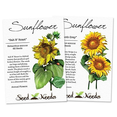 Edible Sunflower Seed Packet Duo (Mammoth Grey Stripe & Salt N' Roast) Non-GMO Seeds by Seed Needs