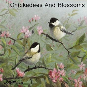 Hi-Look Inc. Hautman Brothers Chickadee single design