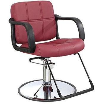 Hydraulic Barber Chair Styling Salon Beauty Equipment Spa Bestmassage