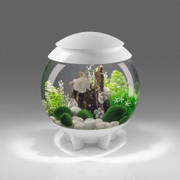 biOrb Halo White Aquarium, 15 Liter