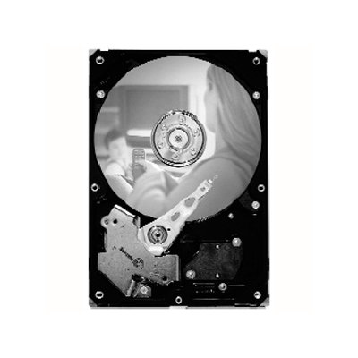 Seagate SV35.5 ST31000525SV 1TB 3.5 Internal Hard Drive - SATA - 7200rpm - 32MB Buffer - Hot Swappable
