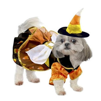 Stellar Pet Boutique SP14719 Candy Corn Witch Costume