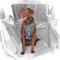 Kurgo Gray & Blue Journey Dog Harness, Medium