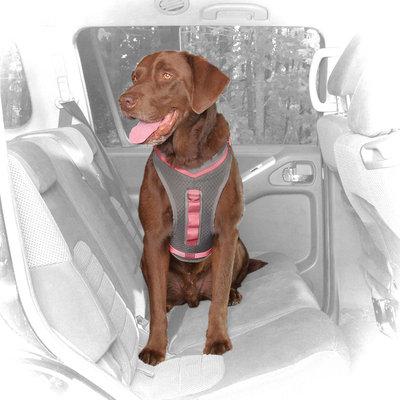 Kurgo Gray & Pink Journey Dog Harness, Medium