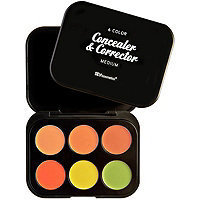 BH Cosmetics 6 Pc Color Concealer & Corrector Palette