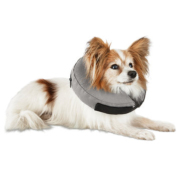 Well & Good Inflatable Collar for Dogs and Cats, X-Small